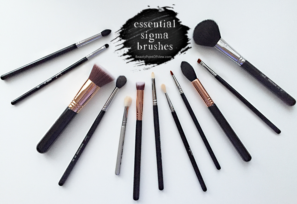 My Essential Sigma Brushes - Beauty Point Of View